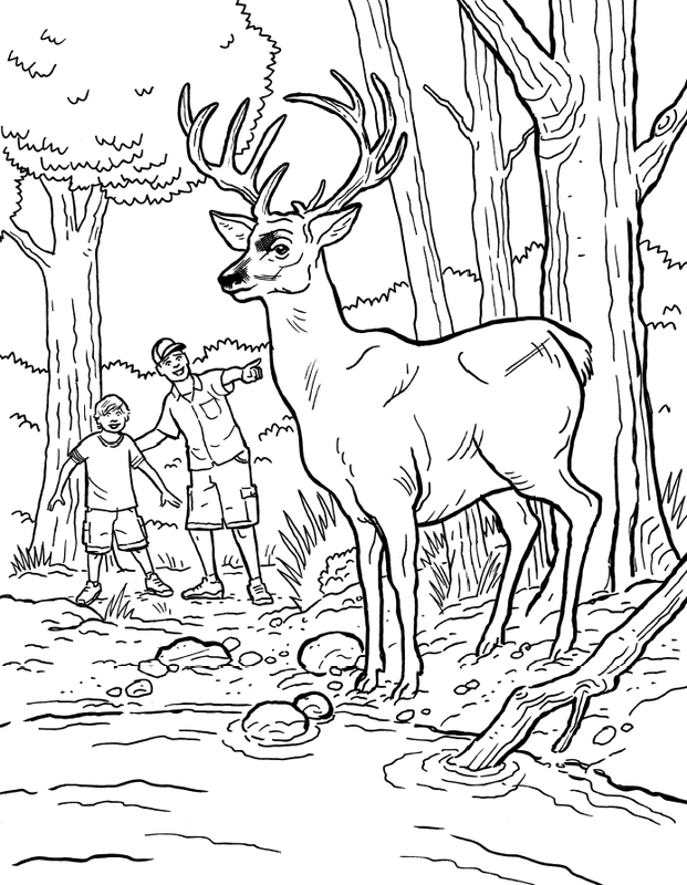Bass Pro Shop Coloring Pages Coloring Pages Professional Coloring Pages